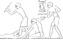 Ancient Plague Victims Dound in Egypt