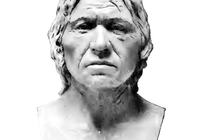 Neanderthal-Human Head