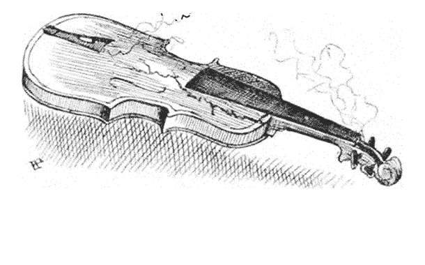 The Story Behind the Shape of a Violin
