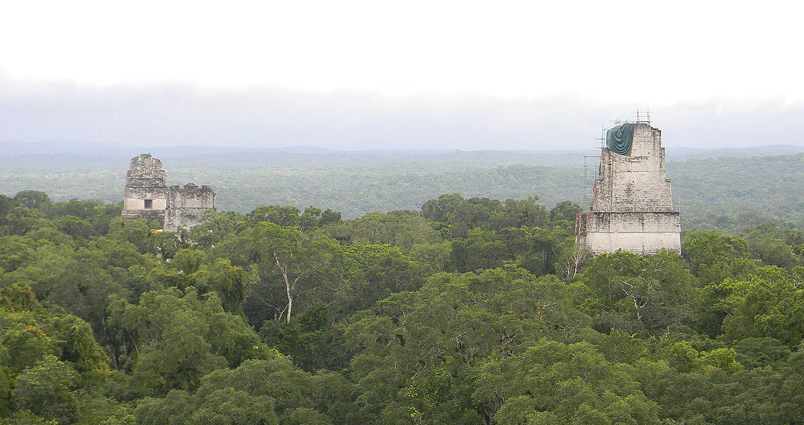 maya collapse A new study points to deforestation and climate change bustling mayan cities such as tikal, in present-day guatemala, were likely abandoned due to a combination of.