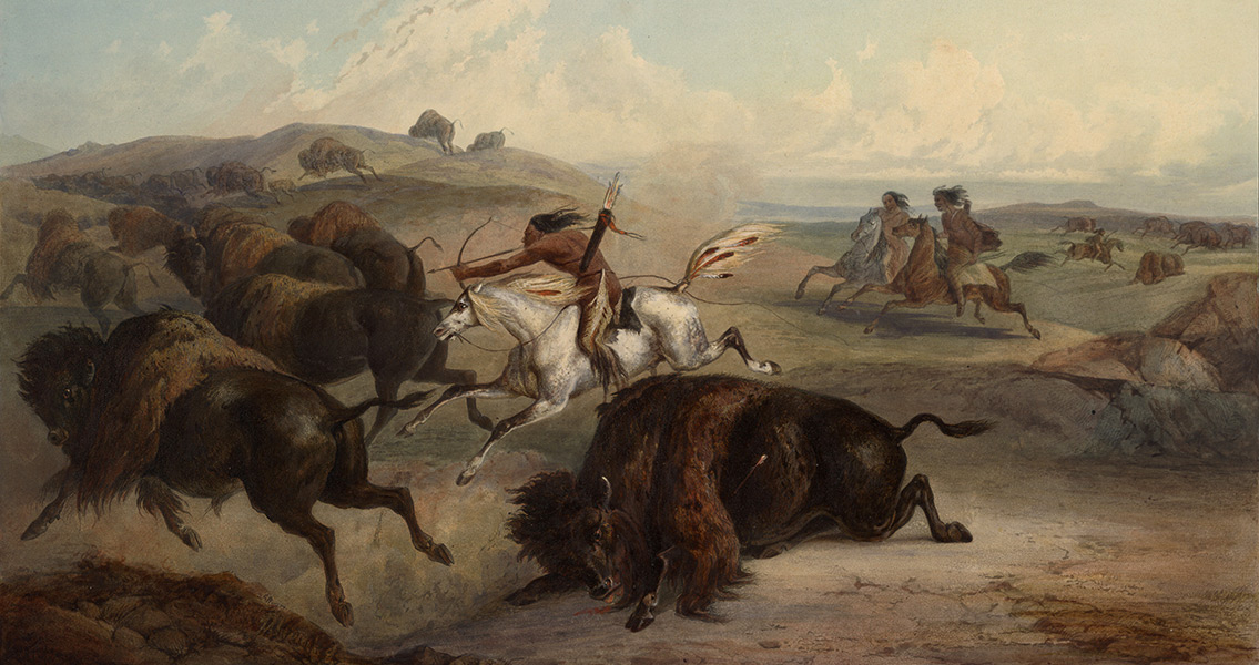 Bison-Hunting Shaped Native American Society