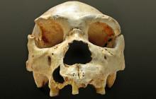 Oldest Murder Victim Discovered