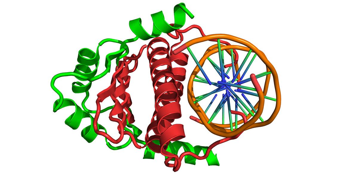 Epigenetics Provides Glimpse Into Ancient Lifestyles