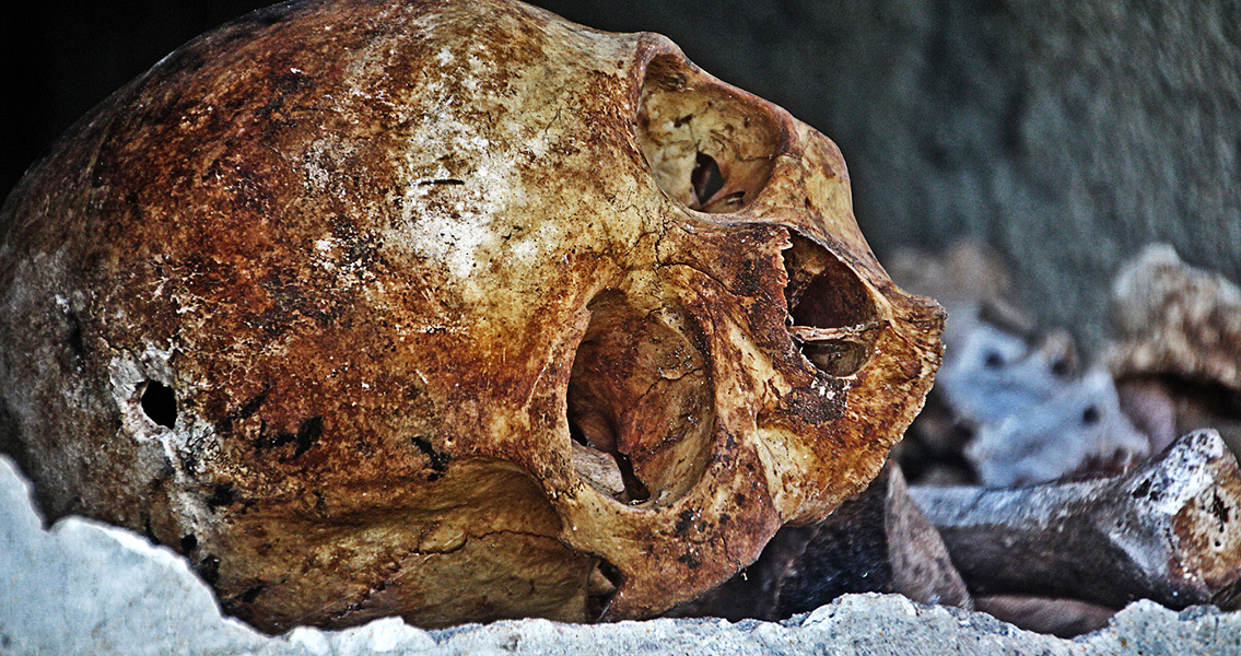 Skulls Suggest Violence Used as a Tool of Political Control