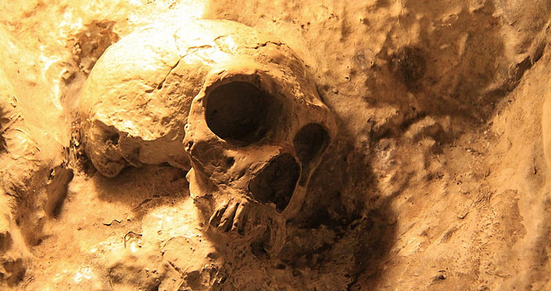 Genome Sequencing Pushes Back Neanderthal Origins