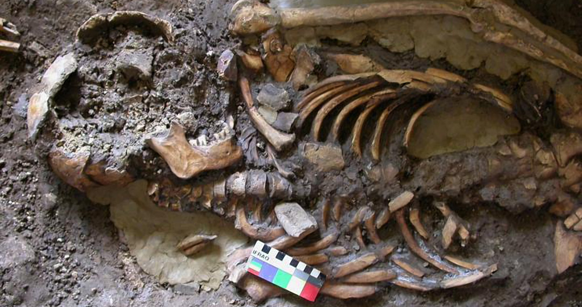 New Strand of European Ancestry Discovered