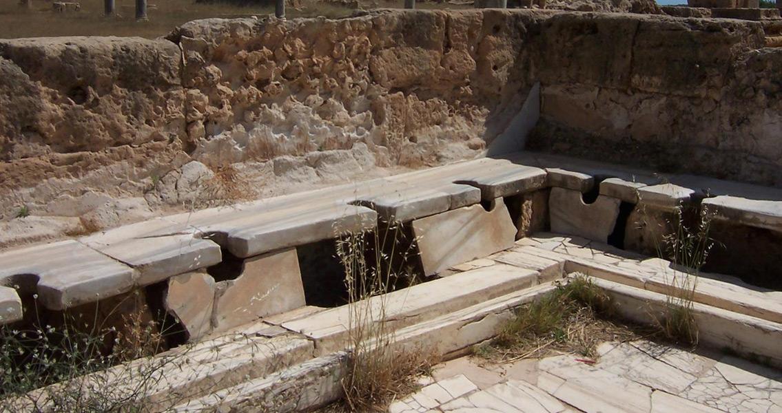 Et Tu, Ectoparasites? Roman Empire Not So Sanitary