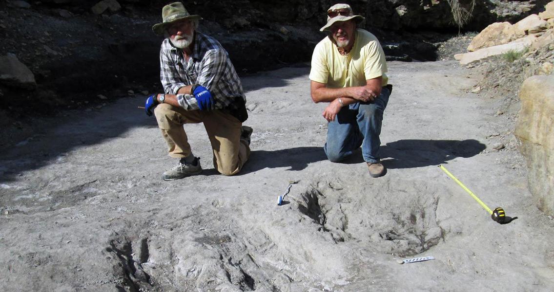Centuries-Old Skeleton of Girl Found on Alberta Farm
