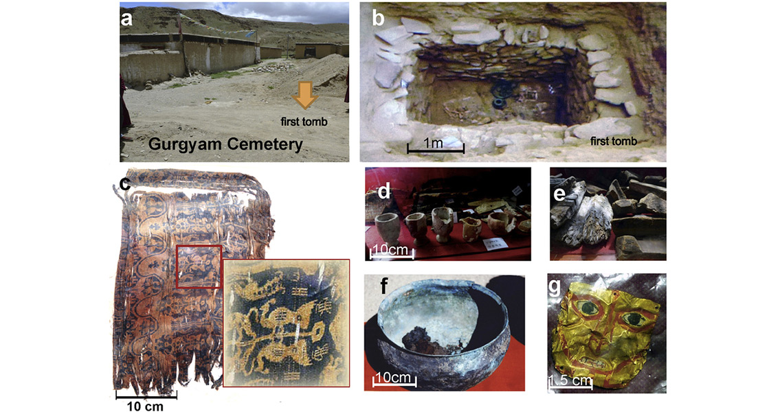 Oldest Tea Ever Discovered in Chinese Emperor's Tomb