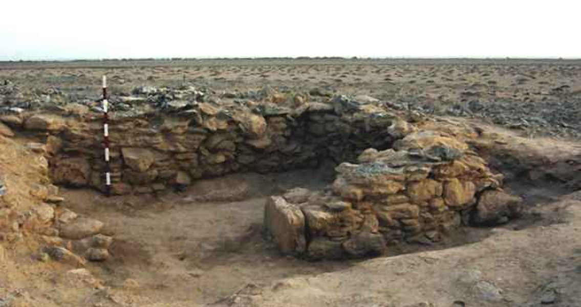 Ancient Remains Paint Picture of Grassland Climate Change