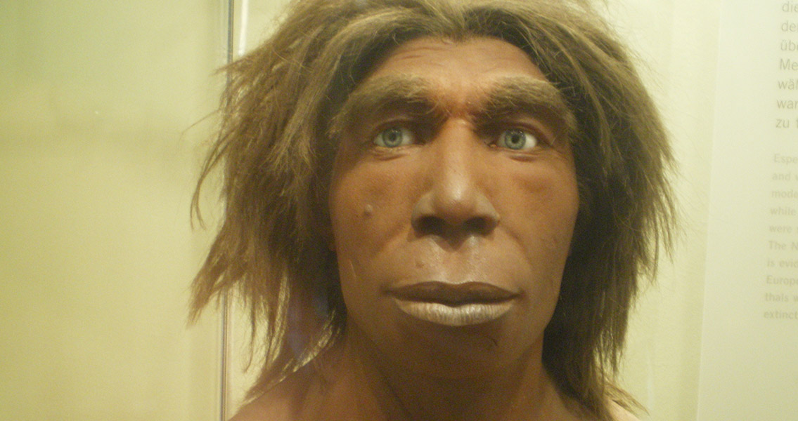 New Information Added to Timeline of Human Evolution