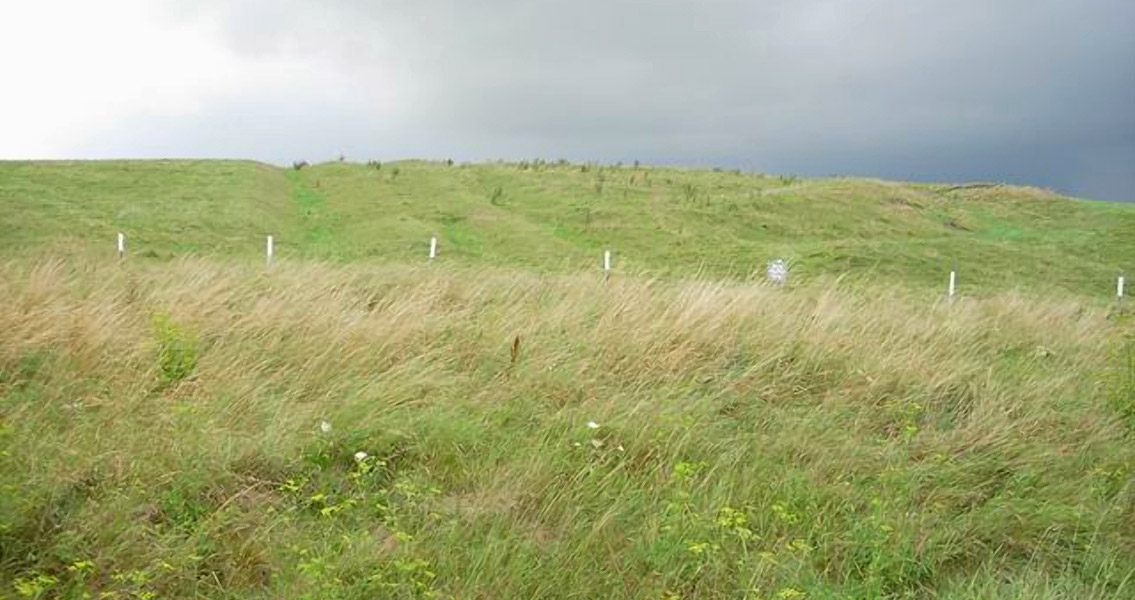 Anglo-Saxon Graves, Prehistoric Finds Discovered in UK