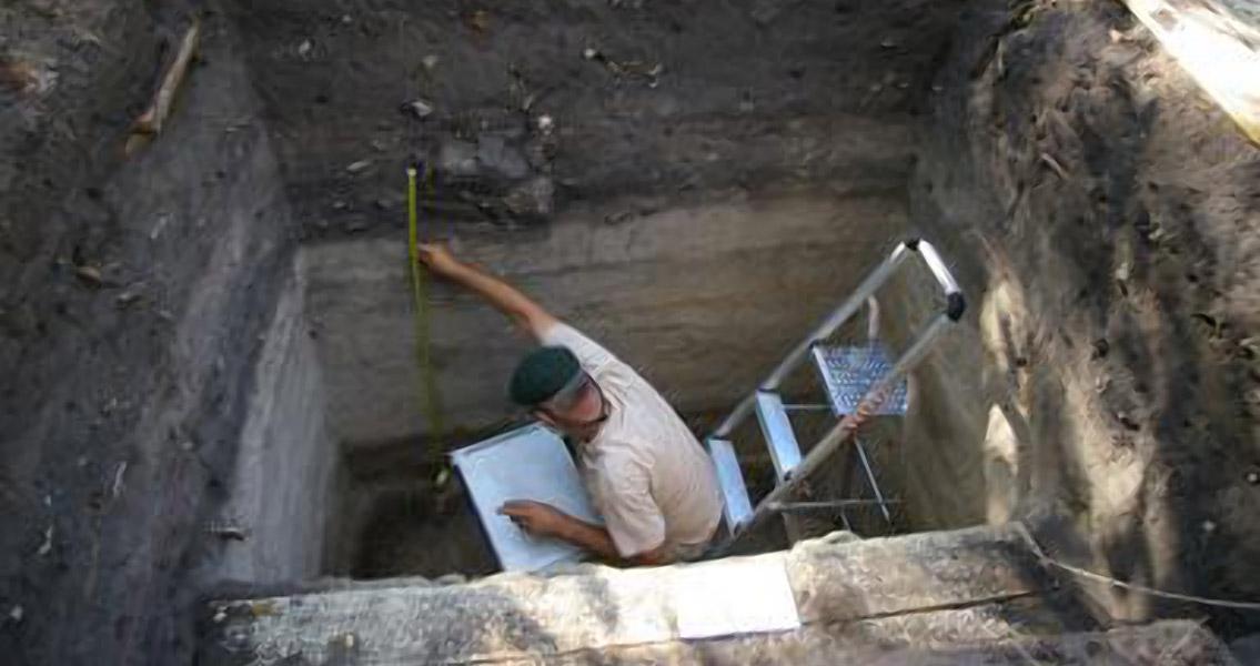 Rice and Beans Solve Madagascar Mystery