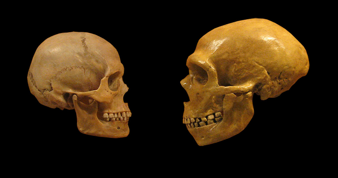 Neanderthal Mutations Could Still be Affecting Humans