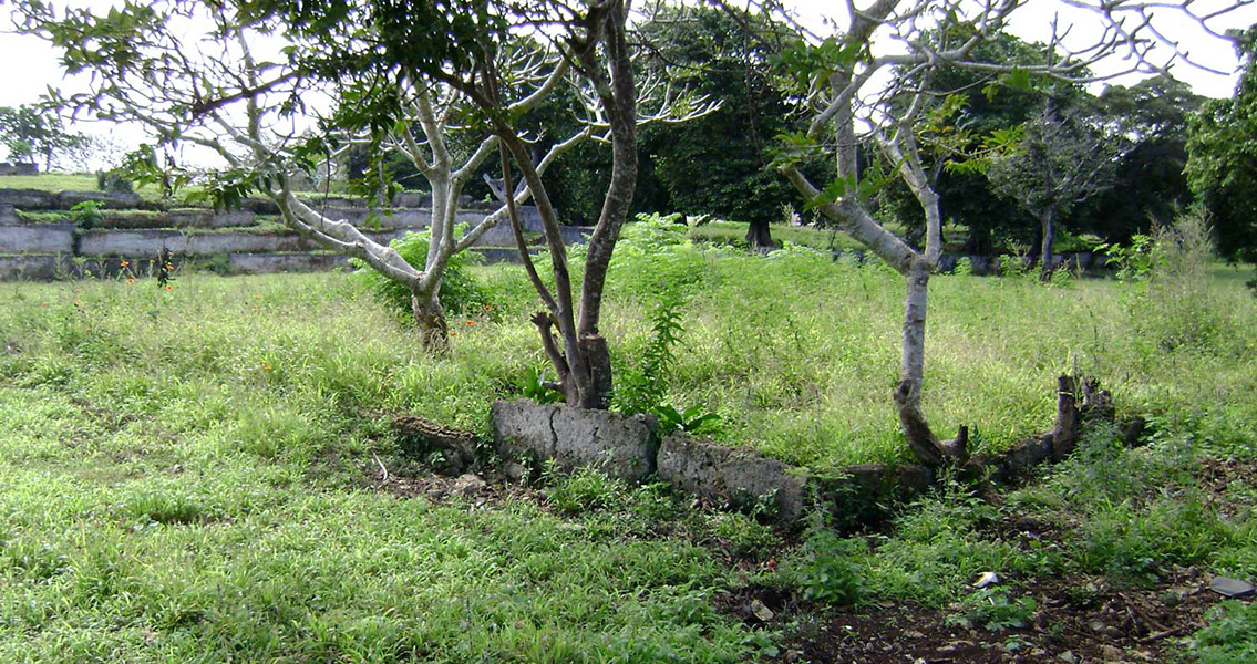New Tech Used to Literally Throw New Light On Tongan Ruins