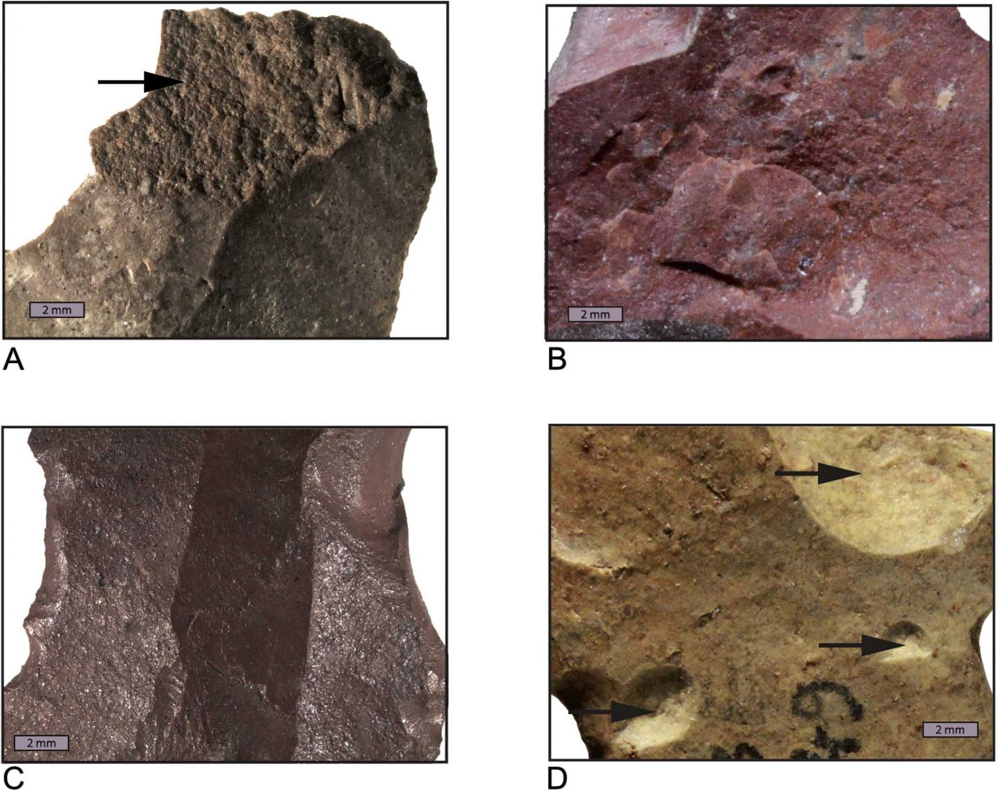 Stone Age Humans Heat-treated Stone Tools