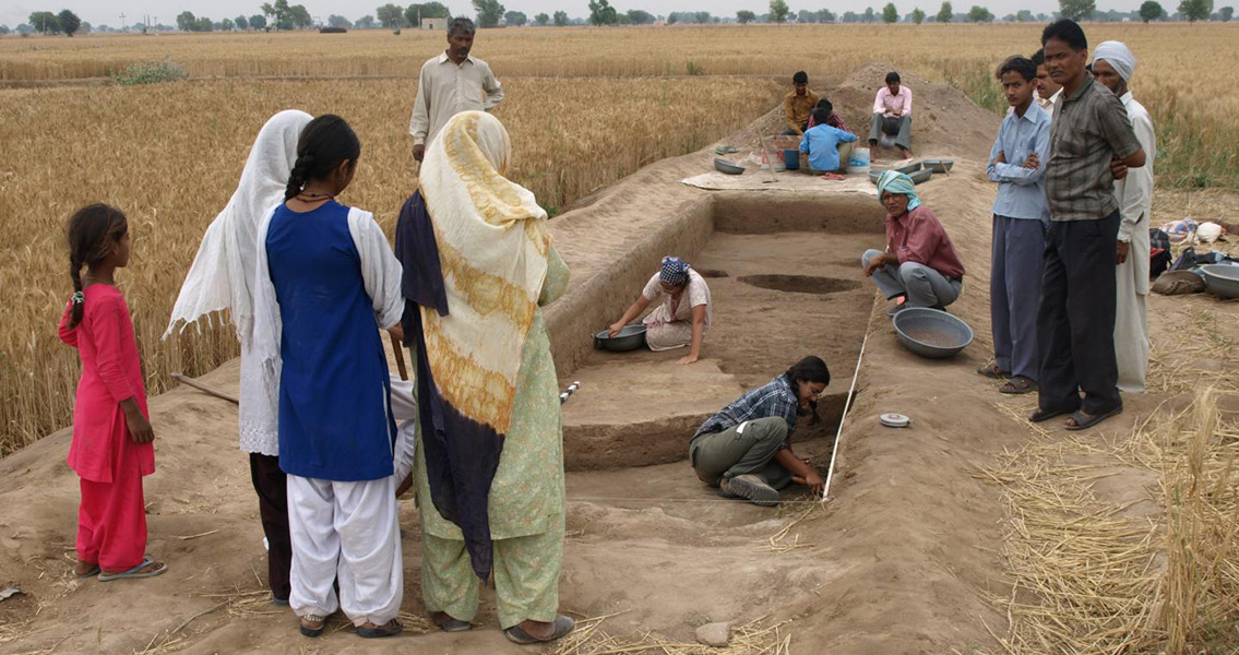 Over 4,000 Years Ago, the Indus Grew Rice and Used Crop Rotation