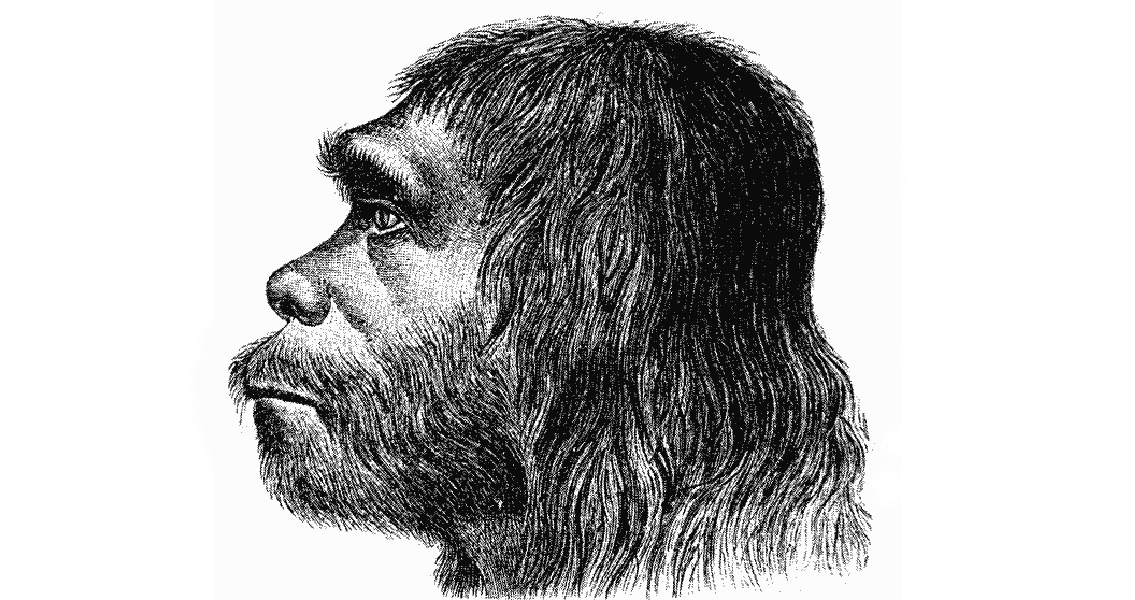 Sex With Neanderthals Still Benefiting Humans