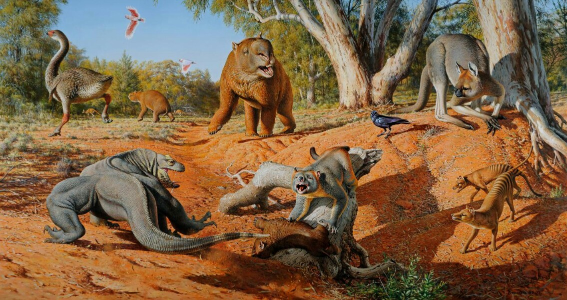 Faeces Eating Fungus Shows Humans Sent Megafauna Extinct