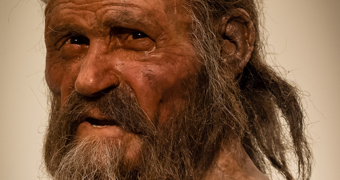 Researchers Discover Otzi the Iceman's Last Meal