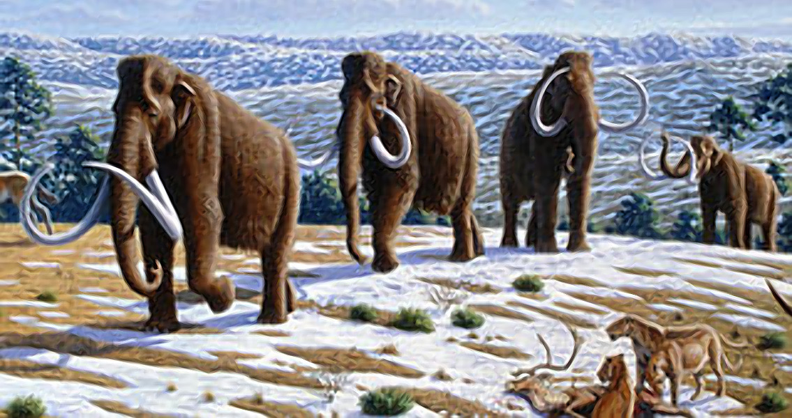 Woolly Mammoth Dna Successfully Spliced Into Elephant Cells