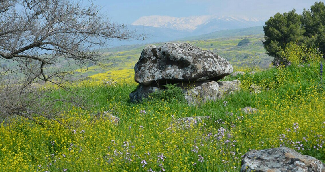 Unusual 4,000 Year Old Dolmen Discovered in Galilee