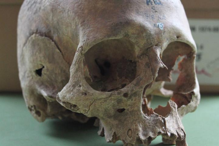 Mass Grave Revealed to be Viking Army Burial - The History News of the Week