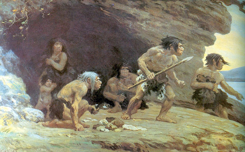 Secrets of the Neanderthals: collaborative, intelligent hunters
