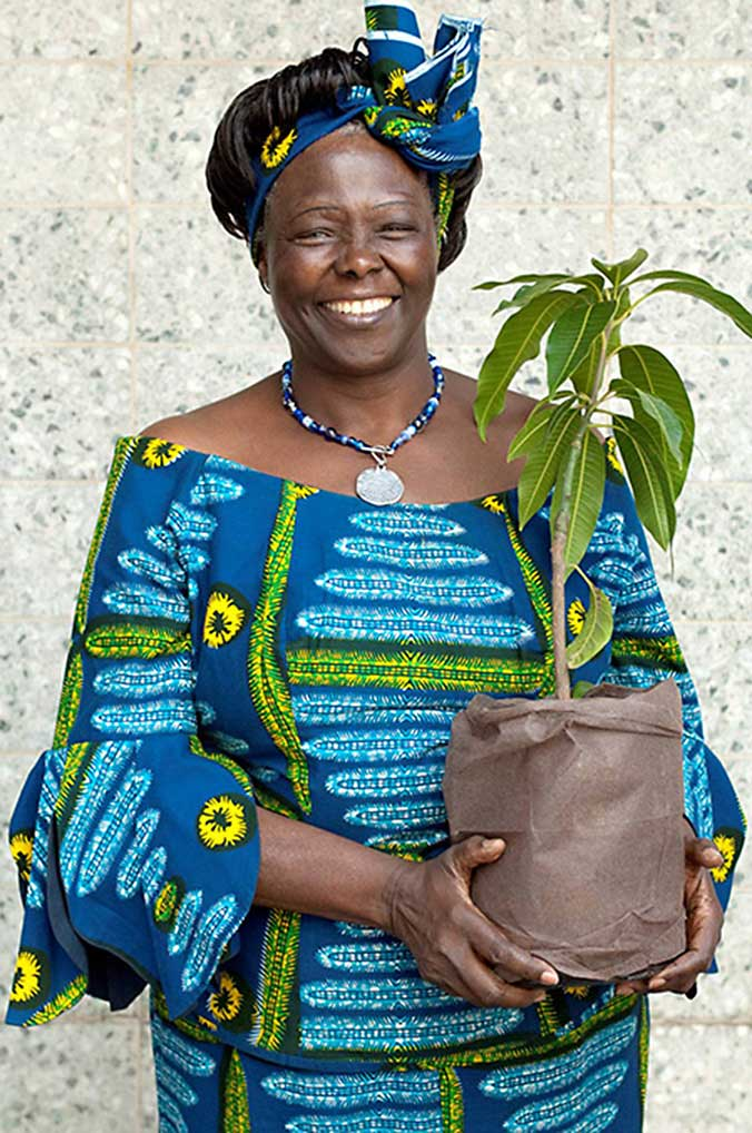 Planting Seeds of Hope: Wangari Maathai, part 1